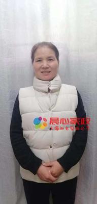 育嬰師,王阿姨