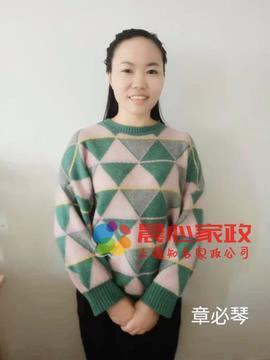 上海保姆,章阿姨